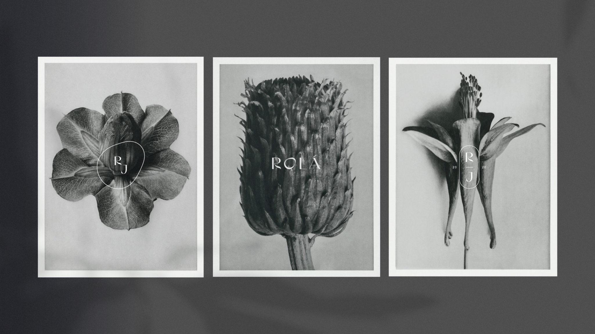 Rolá — Branding